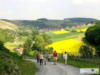 Altenbergaufstieg_zur_Rasthtte_-_Panoramablick_auf_Retzstadt_Meurer